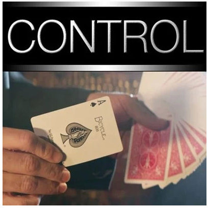 2014 Control The Ultimate 13 Card Controls (Download)