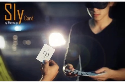 2015 Sly Card by Bboymagic (Download)