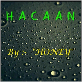 Honey's Any Card At Any Number 2014 HACAAN by Honey (Download)
