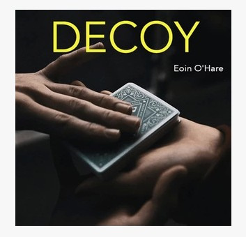2013 Decoy by Eoin O'Hare (Download)