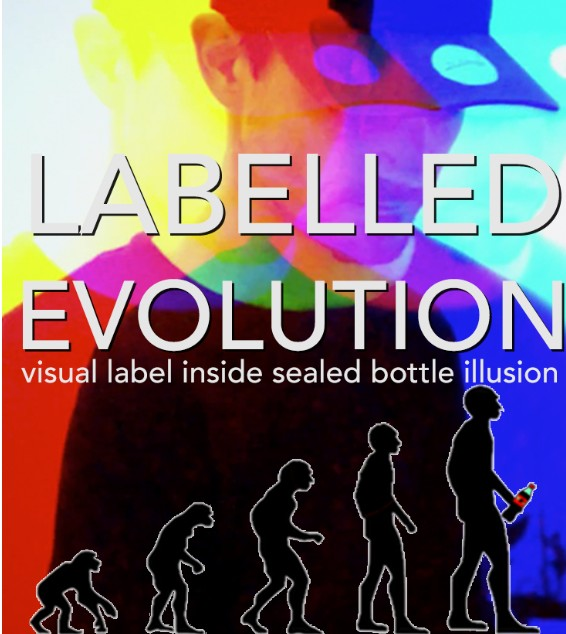 Ben Williams - Labelled Evolution