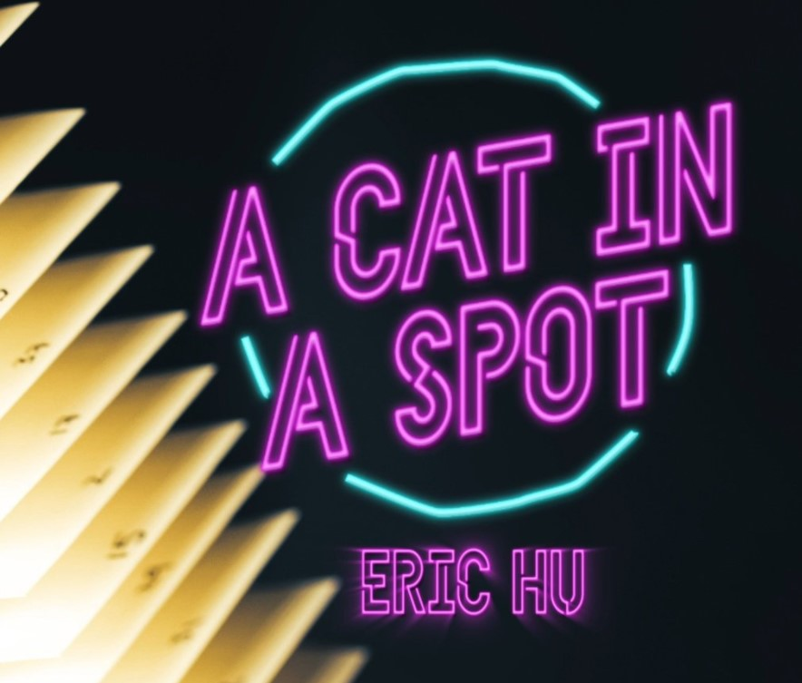 A Cat in a Spot by Eric Hu (Video Download)