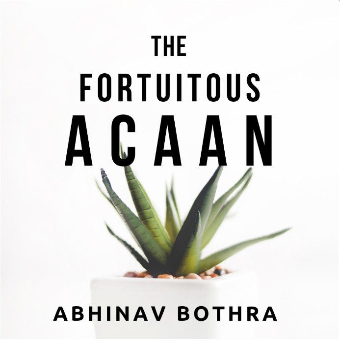 The Fortuitous ACAAN by Abhinav Bothra (PDF + Video Download)