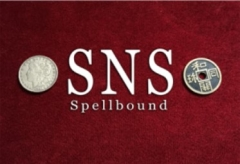 SNS Spellbound by Rian Lehman (MP4 Video Download)