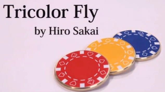 Tricolor Fly by Hiro Sakai - Download