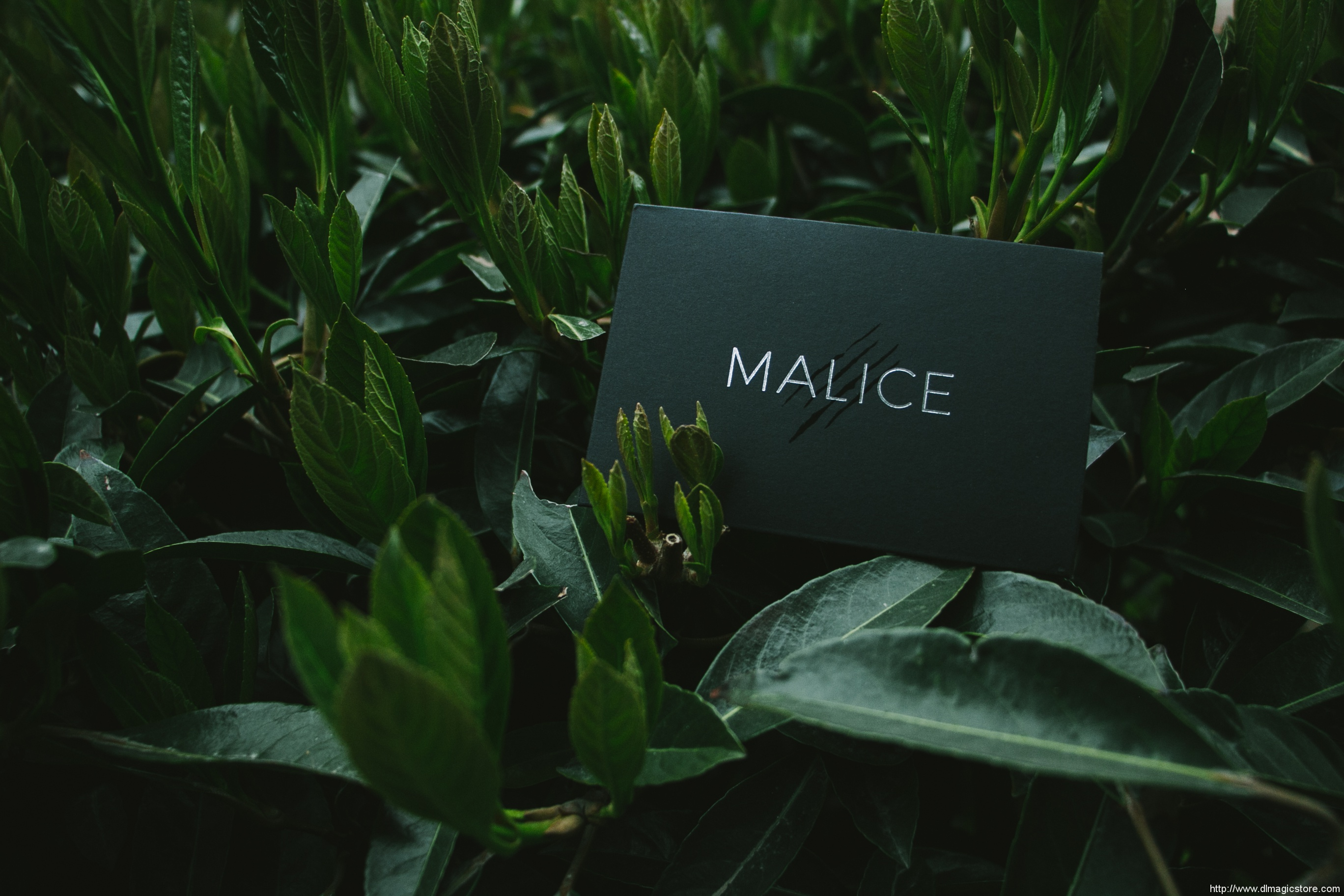 Malice by Eric Jones and Lost Art Magic