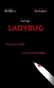 Ladybug by Paul Harris