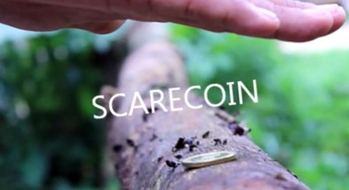 Arnel Creations - SCARECOIN